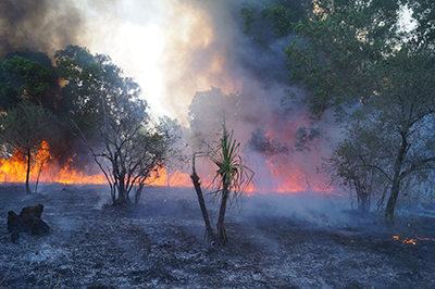 Bushfire Volunteers Thanked For Protecting Their Communities