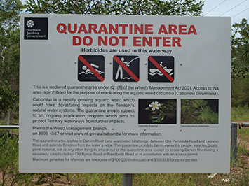 Darwin River Man Fined for Breaching Cabomba Quarantine Zone